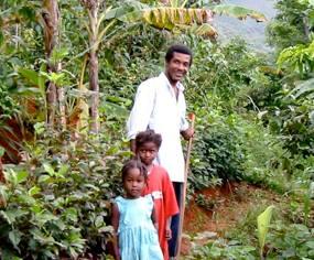 Waldgärten Haiti