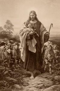 Jesu Gleichnis vom verlorenen Schaf